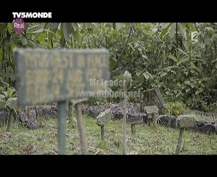 TV5 MONDE added on Real VU on the frequency 12467 V – updated on 02-September-16 at 03:20